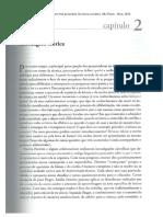 OÑATIVIA, A. C. Alfabetização em três propostas. Da teoria à prática. São Paulo - Cap 2