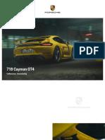 718-gt4-catalog.pdf
