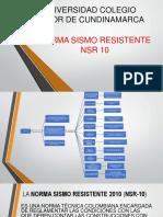 NSR10.pdf