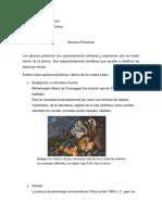 Géneros Pictóricos_López Gómez