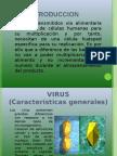 Expo Virus Toxicologia