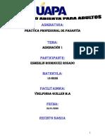 TAREA I PRACTICA PROFESIONAL DE PASANTÍA.docx