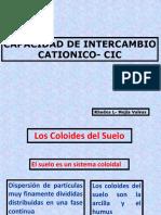 COLOIDES DEL SUELO SEMANA 11.pdf