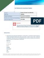 Torres_ErnestoConrado_Sistemas de ecuaciones lineales.docx