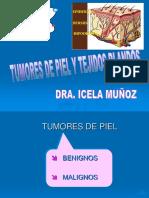 TUMORES DE PIEL Y TEJIDOS BLANDOS 2018 (1).ppt