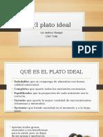 PLATO IDEAL - copia.pptx