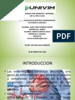 MEAvila_ Enfermedades cardiacas.pptx