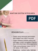 ANATOMI SISTEM INTEGUMEN (MIMI).ppt