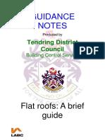 Flat roof guide.pdf