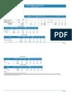 Portfolio Summary Report