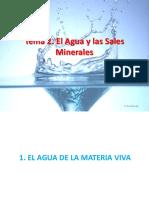 T2-Agua y Sales Minerales