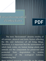 Environmental-Problems.pptx