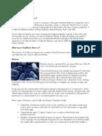 Foodborne Illnesses.docx