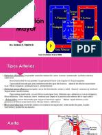 MH IV Clase 3.pptx