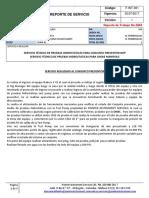Reporte de Servicio PRUEBAS  X43.docx