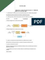 Guía de examen (1).docx