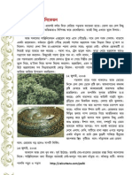48 P10 Essay Aroopchaudhury
