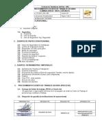 039 CTS-SSO- PRO -039 ELIMINACION DE TIROS CORTADOS