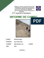 Informe chocas jacay.docx