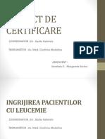 Leucemie.pptx