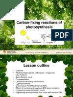 5 Fotosintesi 2.pdf