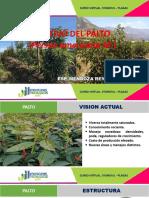 PRESENTACION SYSMOVIL-PLAGAS  CULTIVO DE PALTO