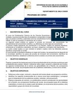 FORMATO PROGRAMA DE CURSO DE FUNDAMENTOS 2020.pdf