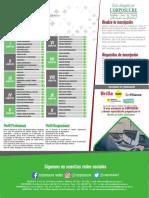 PLAN DE ESTUDIO INGENIERÍA DE SISTEMAS.pdf