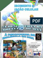 1_ À descoberta da molécula de DNA_estrutura e função.pdf