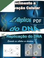 2 _ Replicação do DNA