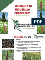 Variedades de Higuerilla 2011 (1).pdf