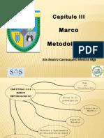CIII metodología alis carrasquero 2019.pdf