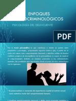 Tema 4ENFOQUES PSICOCRIMINOLÓGICOS
