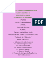 1 Introduccion a la anatomia portafolio.docx