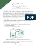 Transferencia de calor entre un tanque agitado y partículas sólidas