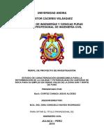 PERFIL-FINAL-CORREGIDO PARA REVISAR