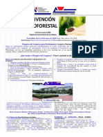 agroforestal-2020-usd