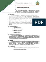 TDR VOLQUETE 15 M3