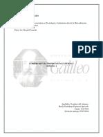 TAREA 1 COMERCIO ELECTRONICO EN GUATEMALA.docx