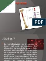 Equipo 9 Hematopoyesis FTP02A 20-2