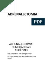 Adrenalectomia em Camundongos resultados
