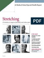 Stretching - HBU.pdf