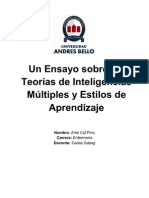 Essay Inteligencias Multiples