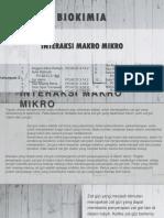 BIOKIM - interaksi makro mikro