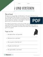 lesen-und-verstehen-felix-ist-krank-16012020