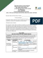 BIOLOGIA 7 - TRES PERIODOS - ALBA INES