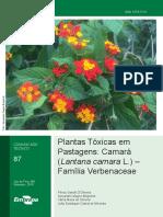 COT-87-Plantas-Toxicas-Camara