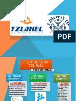 VISIÓN GENERAL TZURIEL 2019 PDF