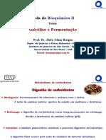 Aula02BioqII_Glicólise.pdf