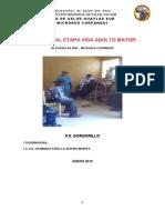 PLAN ANUAL ADULTO MAYOR.docx